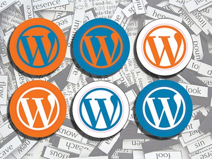 Wordpress.com vs Wordpress.org thumb What are the Limitations of Free Wordpress blog