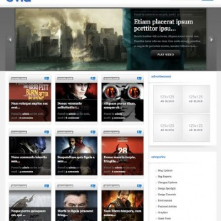 Video WordPress Theme eVid
