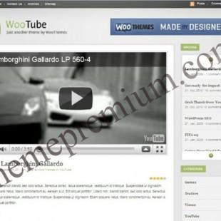 5 Popular Premium Video WordPress Theme