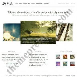 Modest- New Business WordPress Theme Arrived: Elegant Theme
