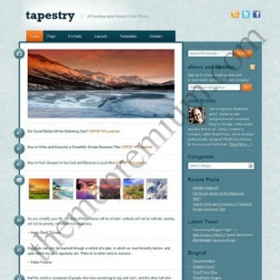 Tapestry | Tumblr Like Micro Blogging WordPress Theme